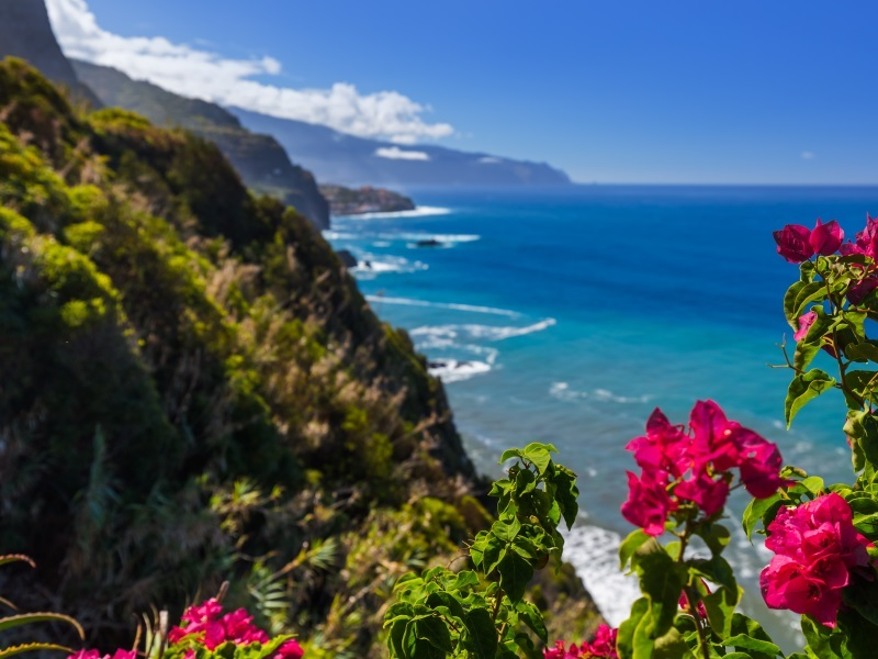 Winter Sun Holiday - Madeira