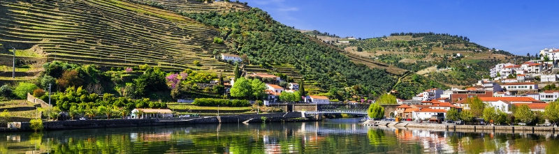 Douro's Valley and Vineyards River Cruise